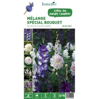 80 bulbes de Mélange spécial Bouquet – Couleurs Variées