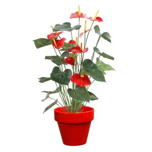 Pot horticole en terre cuite émaillée Rouge – D25 x H23 310743