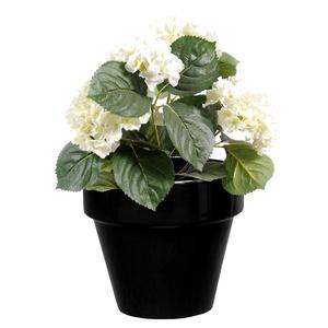 Pot horticole en terre cuite émaillée Noir – D19 x H17 310802