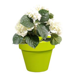 Pot horticole en terre cuite émaillée Anis – D19 x H17 310954