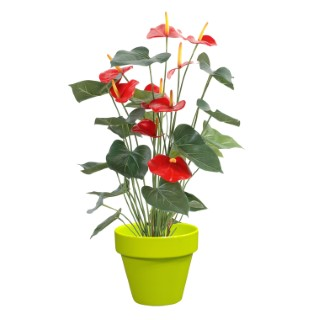 Pot horticole en terre cuite émaillée Anis – D25 x H23 311134