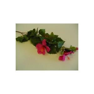 Hibiscus Ø 18,5 cm