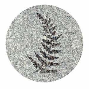 Pas fossile en granit, décor fougère, 30 x 2 cm