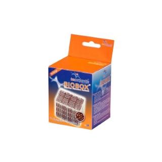 Easybox Aquaclay L Aquatlantis 33456