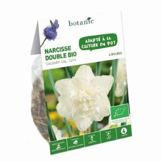 Bulbe narcisse double calgary blanc bio botanic® x 6 334691
