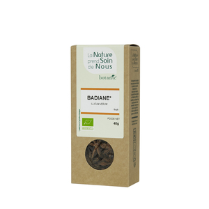 Badiane fruit pour tisane pour infusion