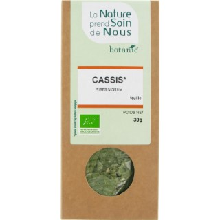 Cassis feuille pour infusion