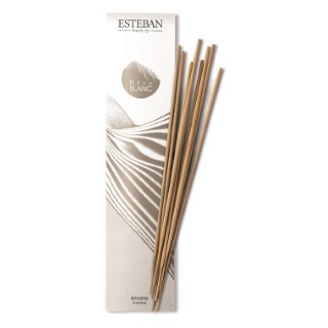 Encens Indiens Rêve Blanc Esteban - 20 bâtonnets 341937