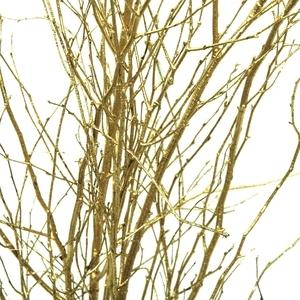 Branches bouleau peintes