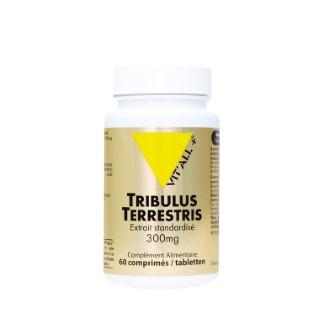 Extrait standardisé de tribulus en boite de 60 comprimés 370333