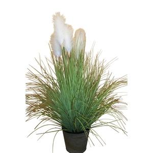 Herbe de Pampa pot zinc 170 cm 381000