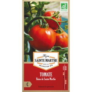 Tomate Reine de Sainte Marthe 382796