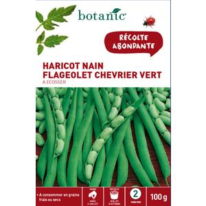 Semences pour flageolet de la variété chevrier vert 100 g - 2 m 386260