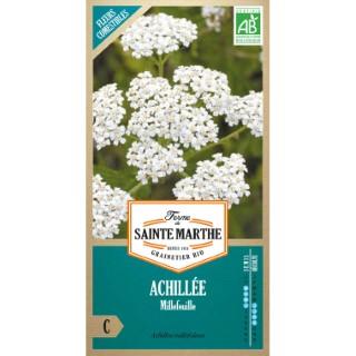 Graines d'Achillée Millefeuille en sachet 386752