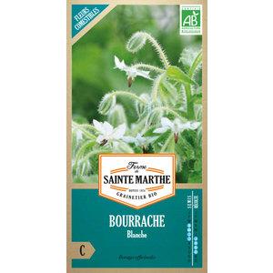 Graines de Bourrache blanche en sachet 386755