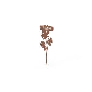 Étiquette Coriandre 34,5 cm 398204