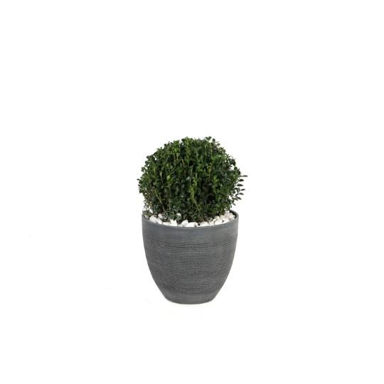 Petit pot rond Echo gris foncé 21,7 L