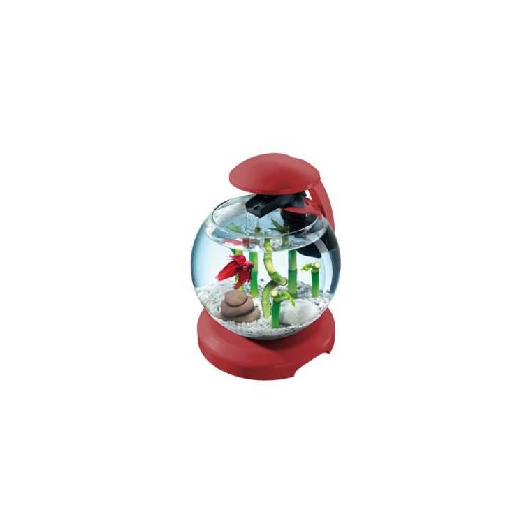 Tetra cascade globe Bordeau 300111