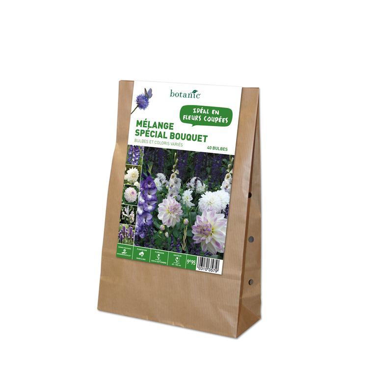 40 bulbes de Mélange spécial Bouquet – Couleurs Variées 310357