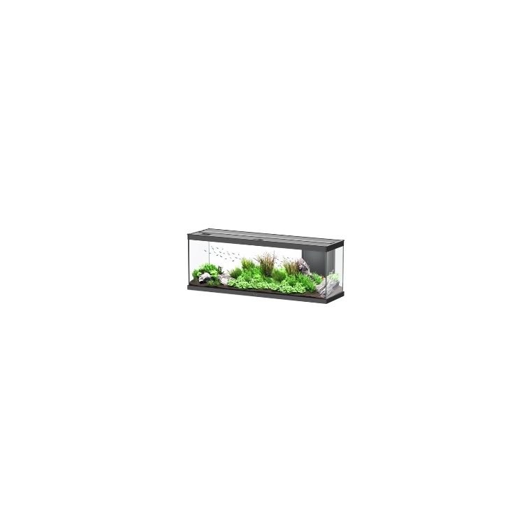 Aquarium style LED avec contours noirs 120 x 40 x 45 cm 310521