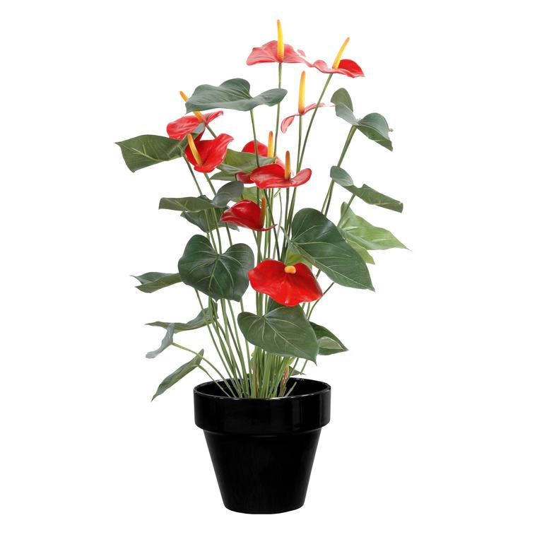 Pot horticole en terre cuite émaillée Noir – D25 x H23 310804