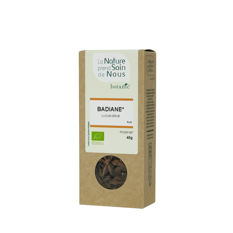Badiane fruit pour tisane pour infusion 335532