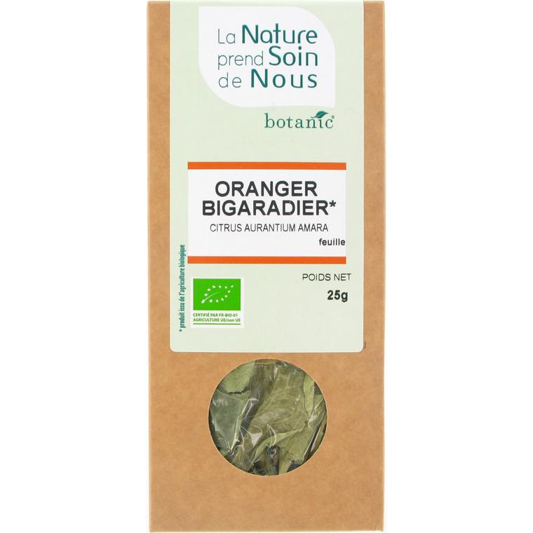 Oranger bigaradier feuille pour infusion 335554