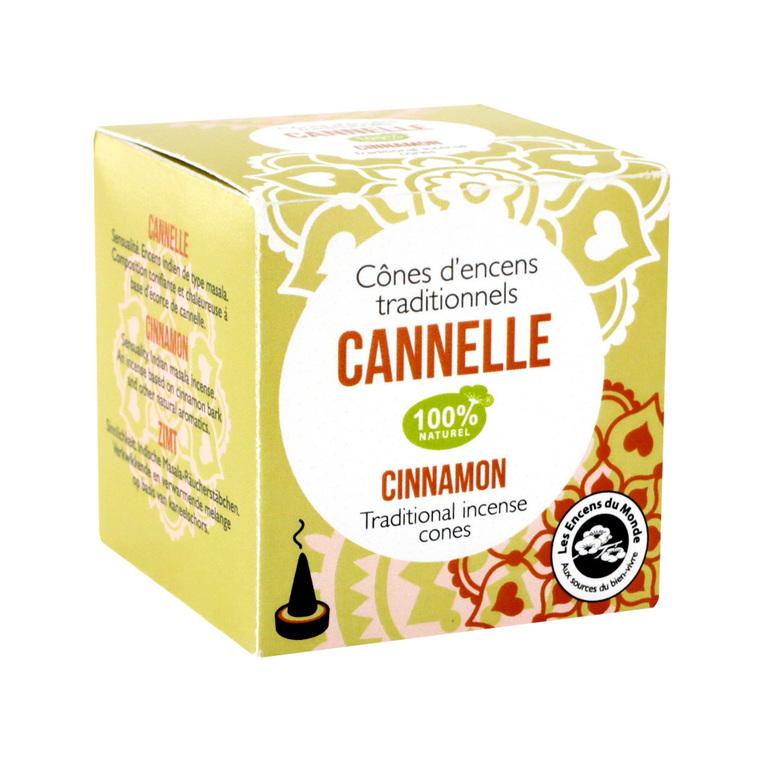 Cônes x15 cannelle 348438
