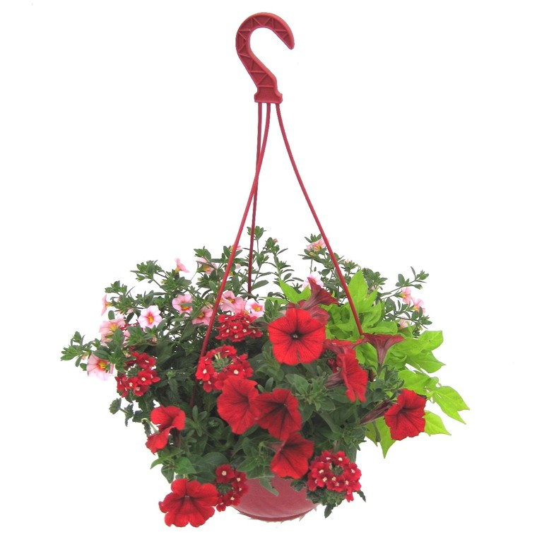 Suspension anglaise. La suspension diam 27 cm 363773