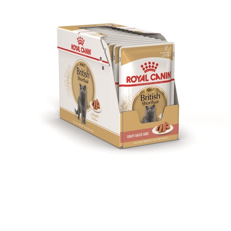 Sachets pour chat British shorthair Royal Canin - 12x85 gr 373034