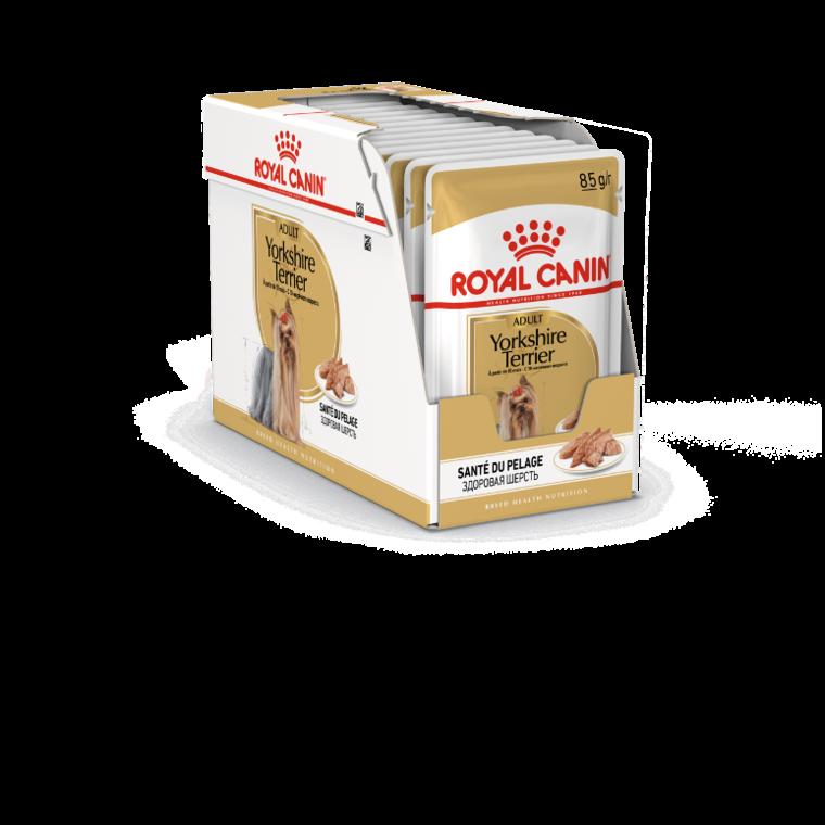 Sachets de nourriture pour Yorkshire Adulte Royal Canin - 12x85 gr 379419