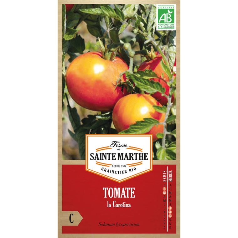 Tomate La Carotina 382785