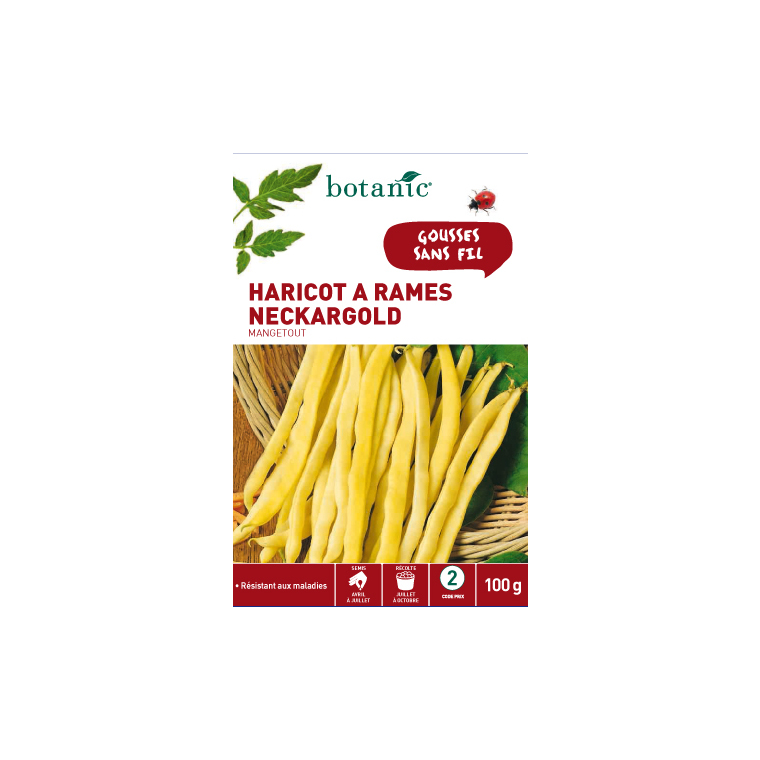Semences pour haricot à rames de la variété neckargold 100 g - 2 m 386134