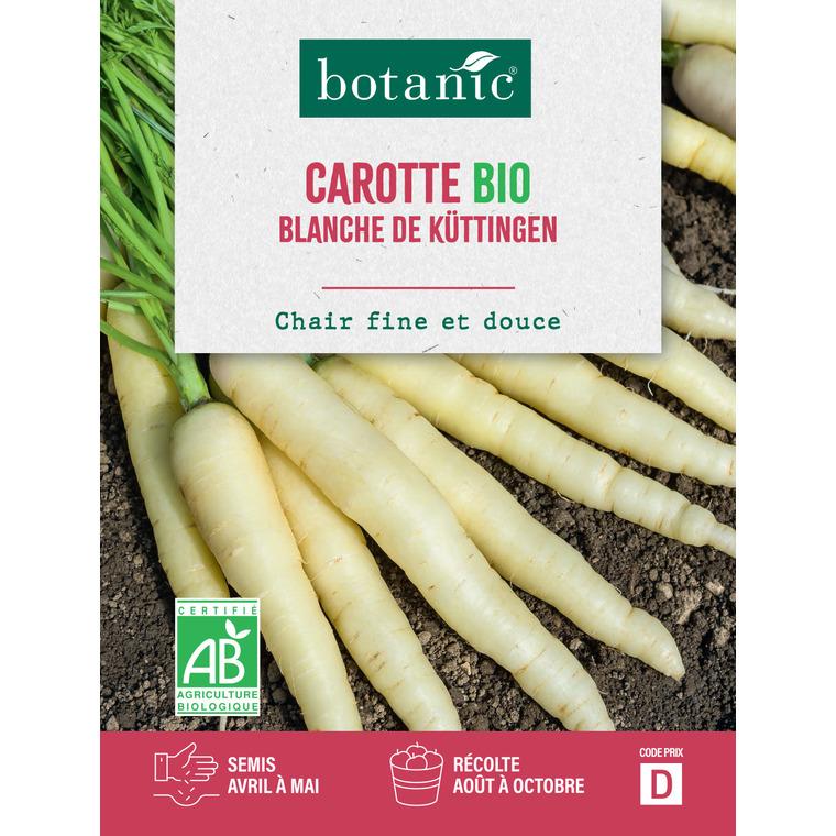 Semences potagères pour carotte blanche de Kuttingen bio 386303