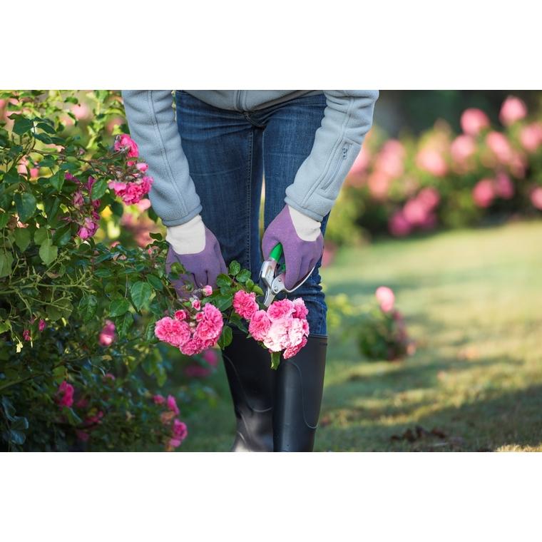 Gants spécial rosier coloris Violet Taille 6 388146