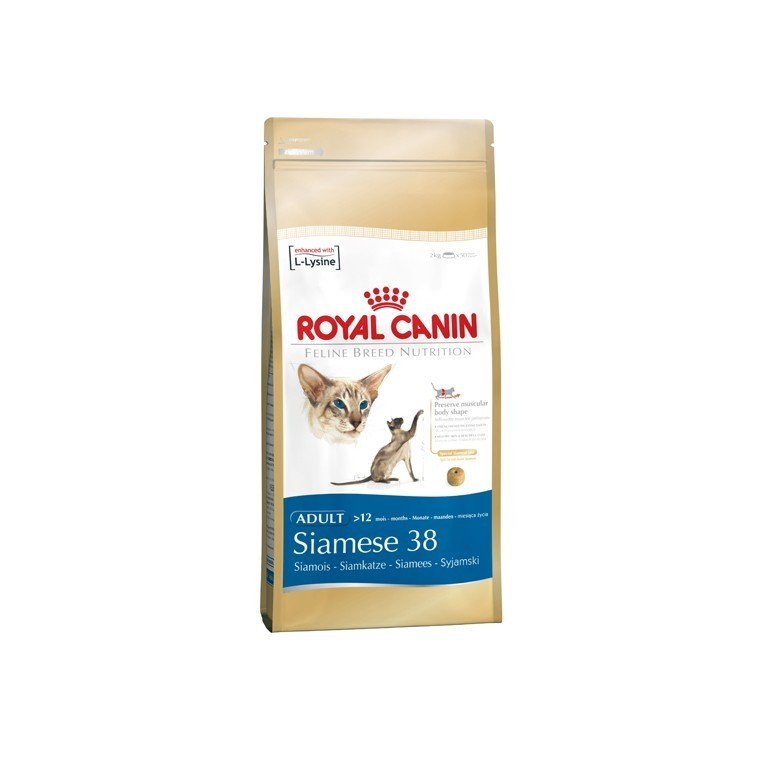 Croquette 2kg chat Siamois Royal Canin 393394