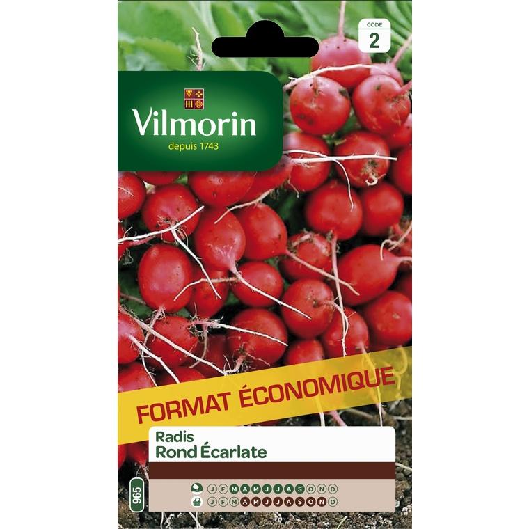 Semences pour radis rond de la variété écarlate - 2 m