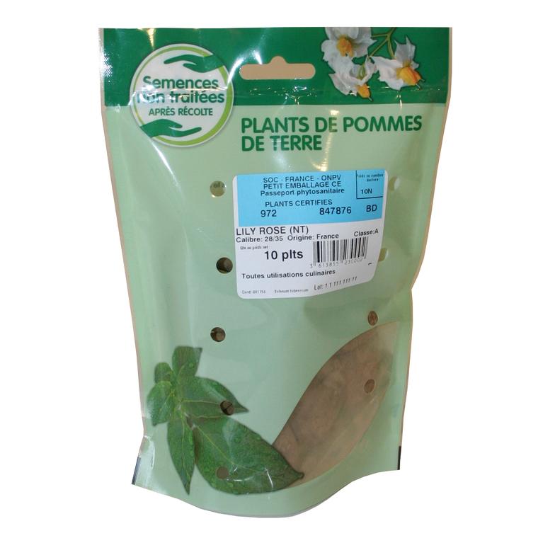 10 plants de pommes de terre lilirose calibre 28 à 35