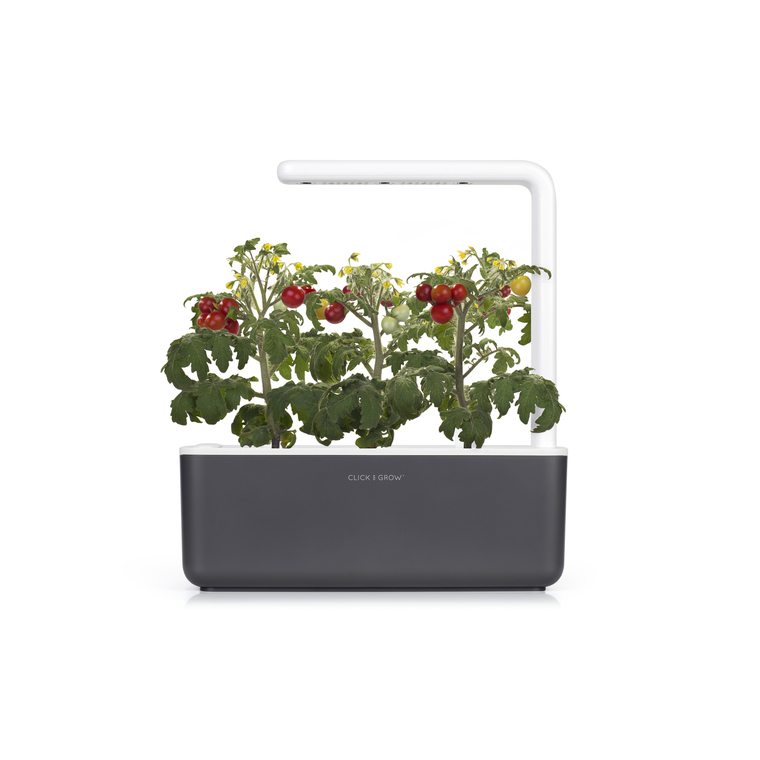 Lot de 3 recharges de graines de mini tomates pour smart garden