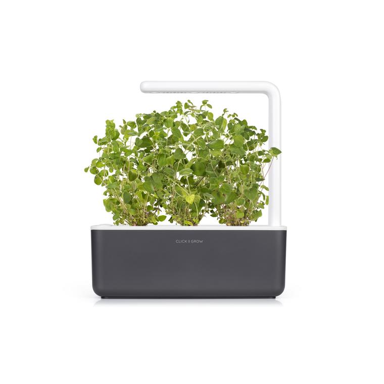 Lot de 3 recharges d'origan pour smart garden