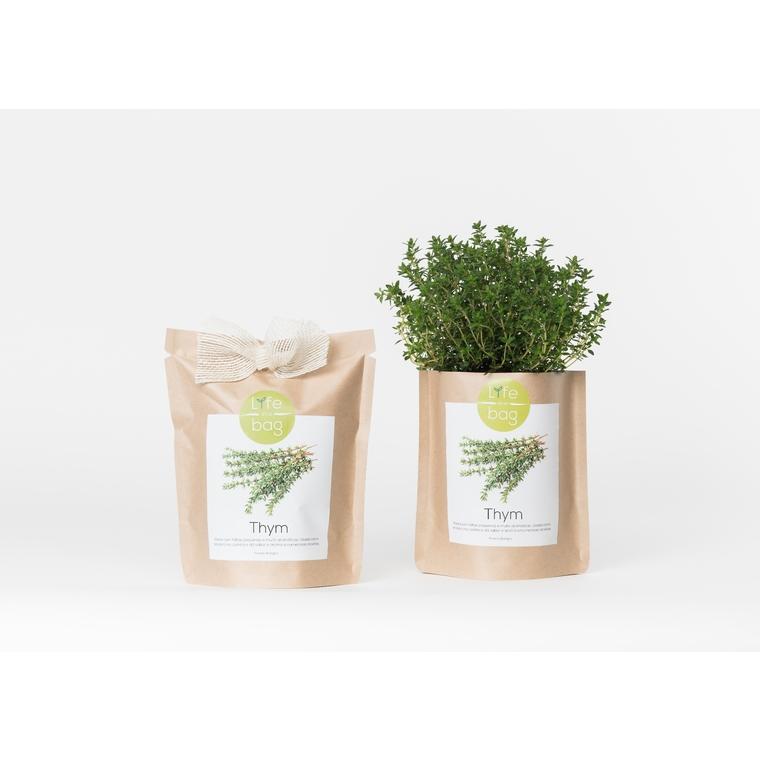 Grow bag de thym bio 300 g