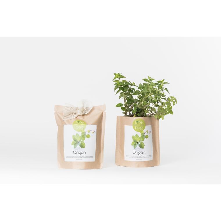Grow bag d'origan bio 300 g