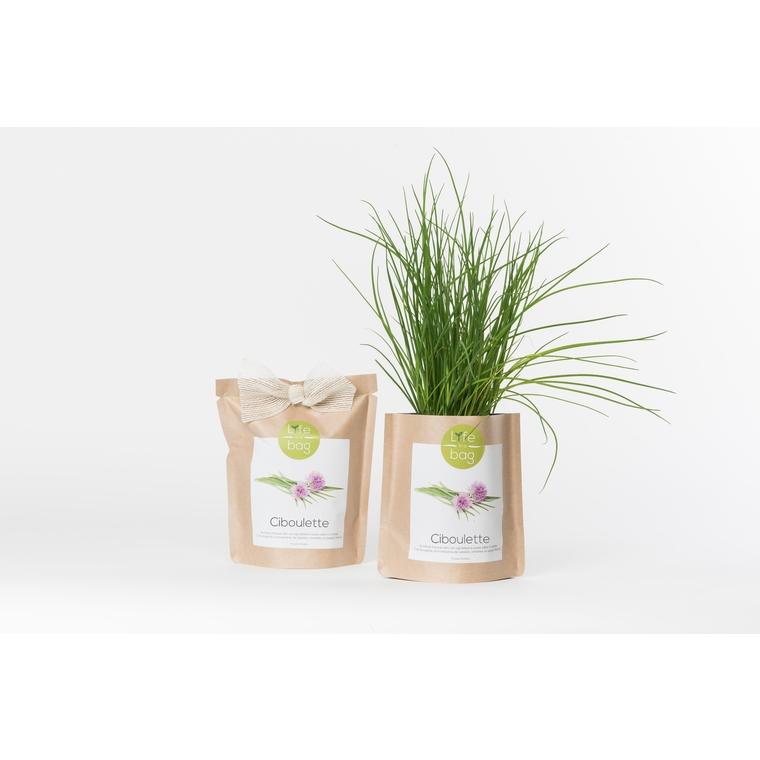 Grow bag de ciboulette bio 300 g