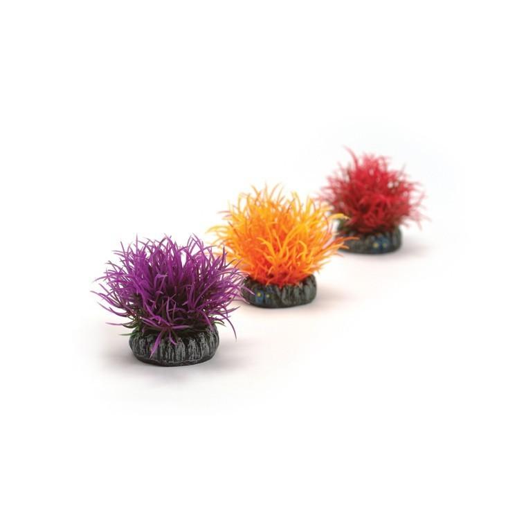 Décoration aqua x3 boules colorées biOrb