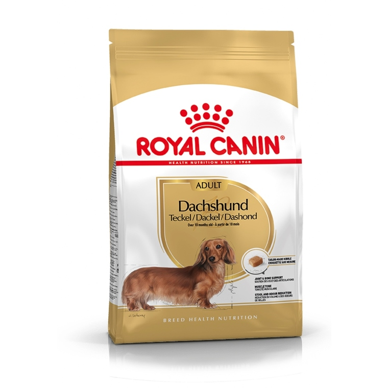 Croquette 1,5kg Teckel adulte Royal Canin