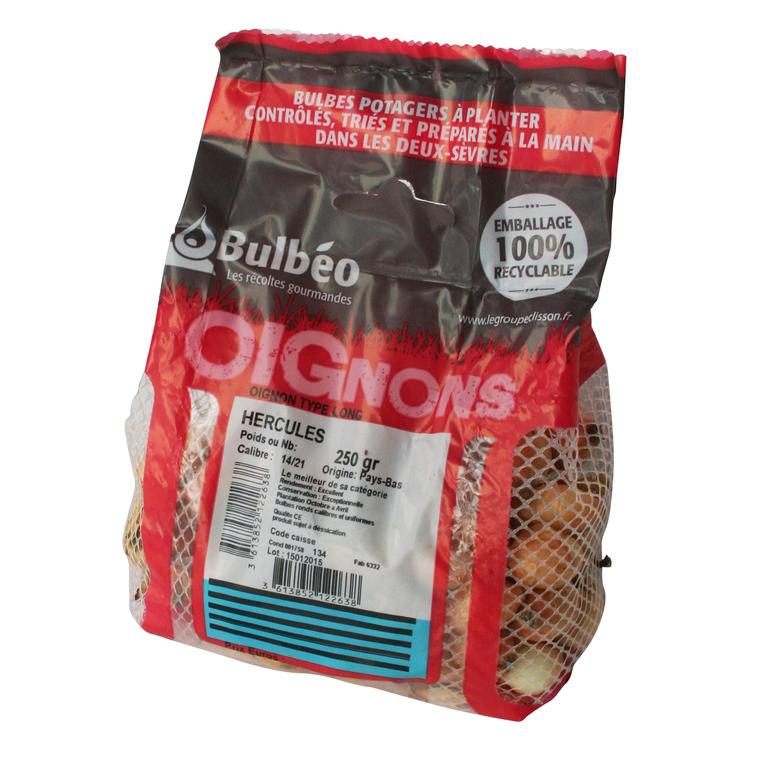Bulbes d'oignons long hercules 250 g