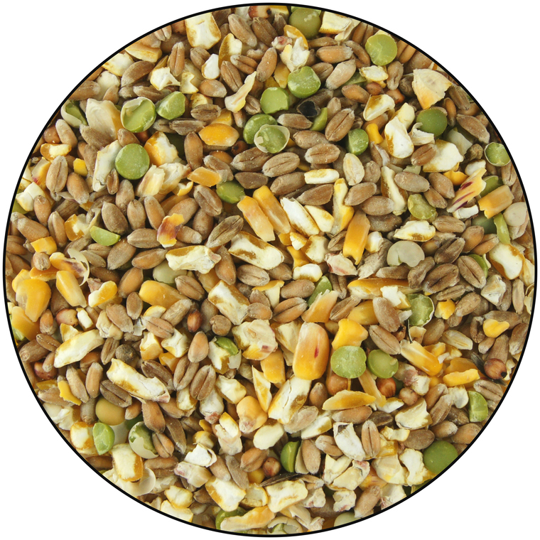 Céréales poussin en croissance et poule naine 10 kg