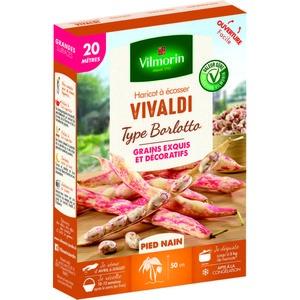 Semences pour haricot nain de la variété vivaldi - 20 m 400175