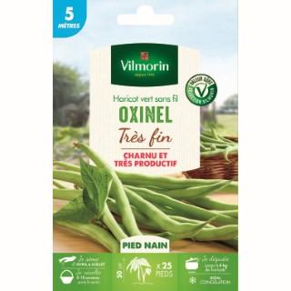 Semences pour haricot nain de la variété oxinel - 5 m 400182