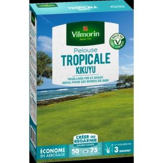 Pelouse tropicale kikuyu 500 g 400215